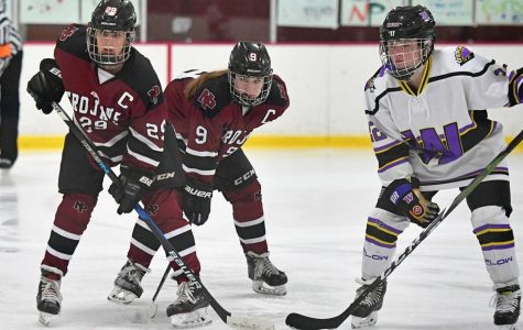 Girls hockey season wrap up