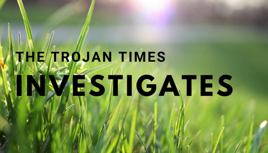 Investigative+Report%3A+Grass+in+New+Prague